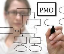 Estruturação de PMO e Implantação de ERP do segmento da Saúde